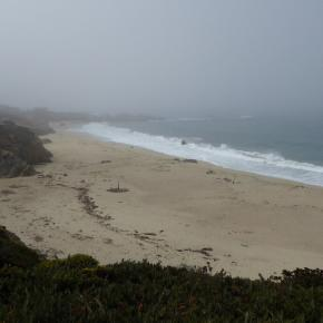 Beach with mist rolling in